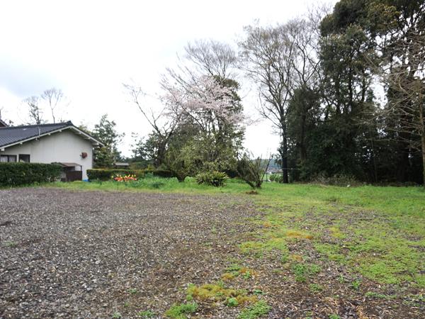 お寺の空き地