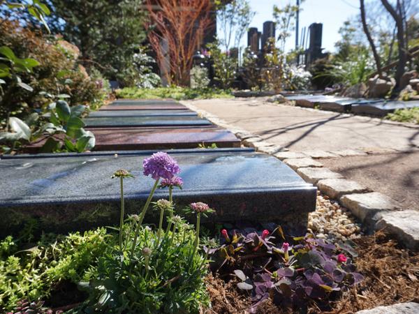 本迹寺の樹木葬庭苑