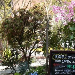 お寺の樹木葬芝庭苑2期オープン